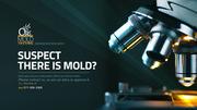Mold Inspection & Testing in Alexandria,  VA