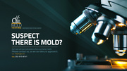 Mold Inspection & Remediation Services in Washington,  DC